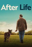 Poster voor After Life