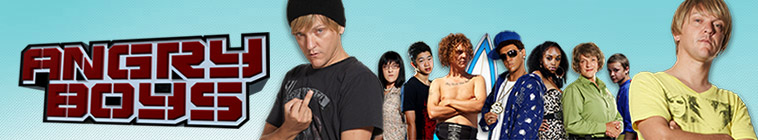 Banner voor Angry Boys