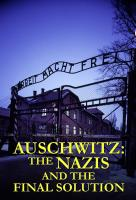 Poster voor Auschwitz: The Nazis & The Final Solution