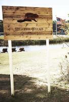 Poster voor Beaver Falls