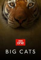 Poster voor Big Cats
