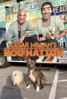 Poster voor Cesar Millan's Dog Nation