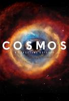 Poster voor Cosmos: A Spacetime Odyssey