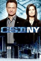 Poster voor CSI: New York