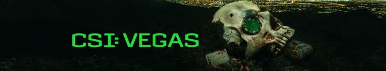 Banner voor CSI: Vegas
