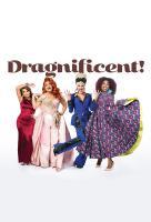Poster voor Dragnificent!