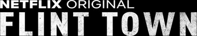 Banner voor Flint Town