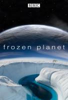 Poster voor Frozen Planet