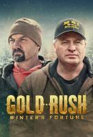 Poster voor Gold Rush: Winter's Fortune