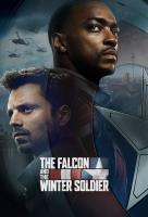 Poster voor Marvel's Falcon & Winter Soldier