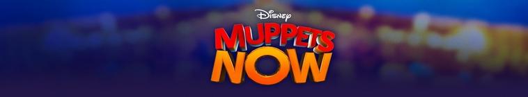 Banner voor Muppets Now