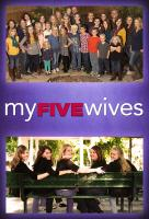 Poster voor My Five Wives
