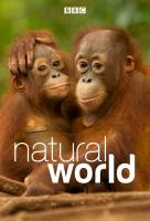 Poster voor Natural World