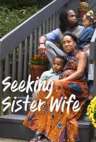 Poster voor Seeking Sister Wife