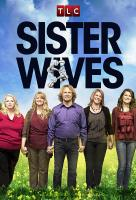 Poster voor Sister Wives
