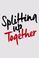 Poster voor Splitting Up Together (US)