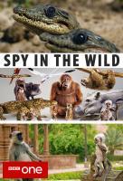Poster voor Spy in the Wild