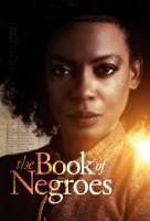 Poster voor The Book of Negroes