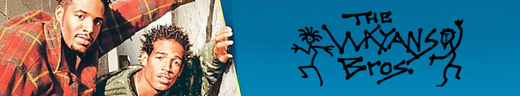 Banner voor The Wayans Bros.