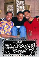Poster voor The Wayans Bros.