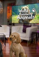 Poster voor World's Funniest Animals